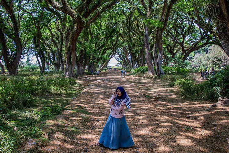 Seorang pengunjung De Djawatan sedang berfoto dengan latar belakang pepohonan trembesi raksasa