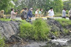 Cemari DAS Cilamaya, Operasional Pabrik Tepung Tapioka di Karawang Dihentikan Sementara oleh Wagub Jabar
