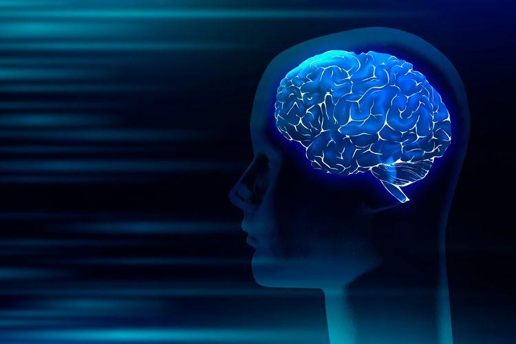 Ilutrasi otak yang mengalami disfungsi kognitif setelah sembuh dari Covid-19