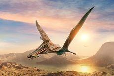 Fosil Dinosaurus Era Jurassic Ditemukan di Gurun Atacama, Dijuluki Si Naga Terbang