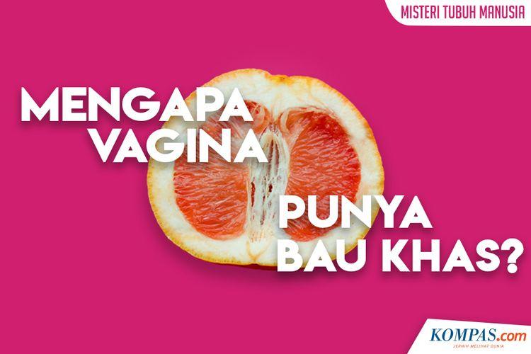 Mengapa Vagina Punya Bau Khas?