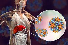 Hepatitis Picu 1 Juta Kematian Tiap Tahun, Ini yang Terjadi di Hati