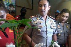 Ketua RT Ini Ditangkap karena Tanam Pohon Ganja di Dalam Pot