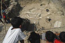 Fosil Gajah Purba Menjadi Tujuan Wisatawan di Grobogan