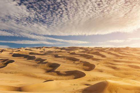Ilmuwan: Suhu Sepanjang September 2020 Terhangat di Seluruh Dunia