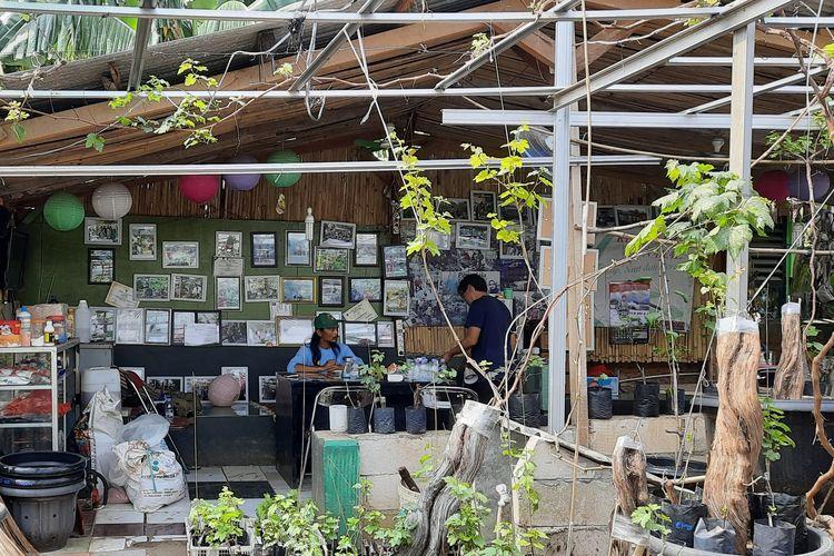 Sejak Maret 2018, Yatno Gondrong (40) memulai bisnis bibit anggur di sebelah rumahnya di daerah Duren Sawit, Jakarta Timur.