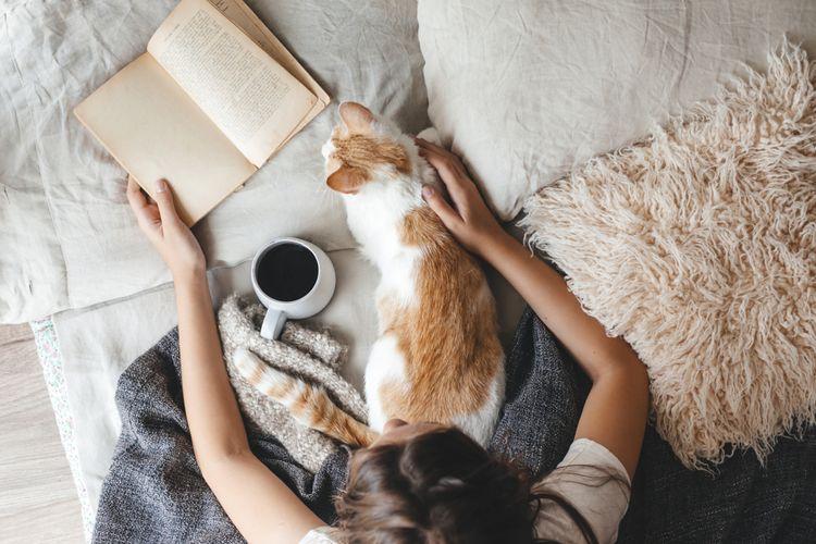 Ilustrasi seseorang membaca buku sembari menyesap teh atau kopi di saat musim dingin maupun gugur.