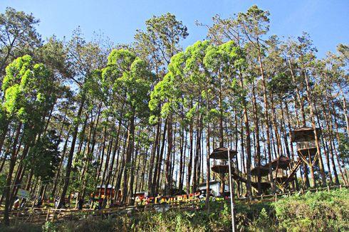 Tiket Masuk, Tarif Menginap, Biaya Outbound di Lawu Park Tawangmangu
