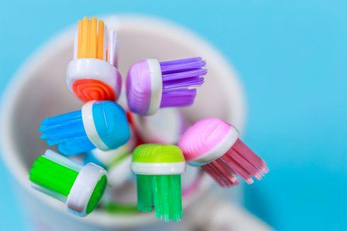 Sikat Gigi Bisa Jadi Tempat Tumbuh Bakteri, Ini Cara Membersihkannya