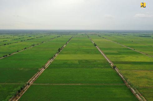 Kementan Optimistis Proyek Food Estate Tahap Awal Rampung Akhir Desember