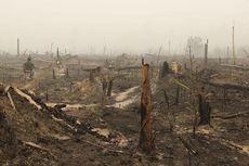 Terbakar Cukup Parah, Berikut 5 Hal tentang Taman Nasional Tesso Nilo