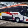 Bus Bagong Punya Kendaraan Baru Pakai Bodi Evonext GT dari New Armada