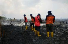 60 Hektar Lahan di Kabupaten Sambas Terbakar, Hampir Sepekan Api Belum Padam