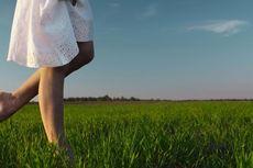 Manfaat Berjalan Tanpa Alas Kaki di Atas Rumput