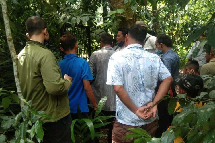 Tim dari BBKSDA Provinsi Sumut bersama warga memasang kandang perangkap di Hutan Bah Bayu, Kelurahan Kerasaan I, Kecamatan Pematang Bandar, Kabupaten Simalungun. Pemasangan jaring perangkap dilakukan setelah beberapa ekor monyet liar yang menyerang warga sejak, Kamis 22 April 2021.