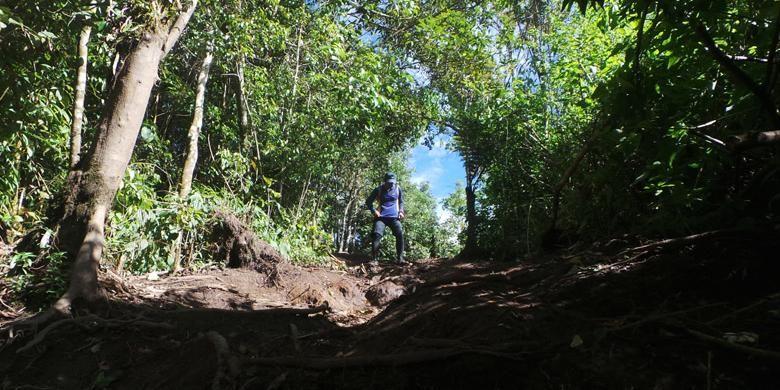 Pendaki melewati jalur pendakian Ai Batumbuk, Kabupaten Solok, Sumatera Barat saat menuju Gunung Talang, Rabu (1/6/2016). Tak hanya jalur yang licin dan berbatu, medan pendakian yang didominasi akar pohon mulai dari R6 hingga R54.