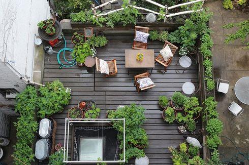 Enam Trik Berkebun di Balkon Apartemen Mungil