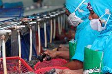 Menperin: Program PEN Berdampak Positif ke Industri