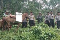 Petugas Logistik Pilkada Hilang di Hutan, Satu Distrik di Papua Belum Memilih