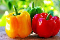 Tahukah Anda Perbedaan Paprika Hijau, Kuning, dan Merah?