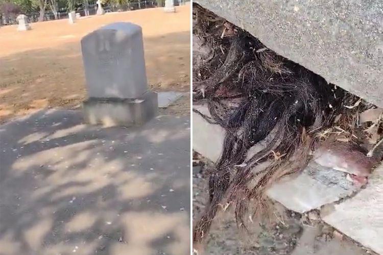 Tangkapan layar dari video rambut keluar dari kuburan tua berusia 100 tahun di Sacramento, California, Amerika Serikat. Video ini viral di TikTok dan membuat perekamnya panik ketakutan.