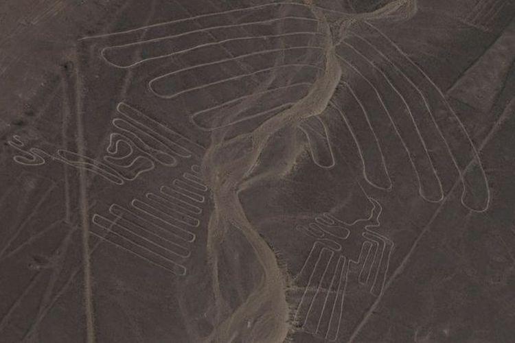 Geoglyph menunjukkan gambar-gambar berbeda.