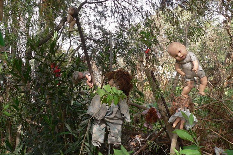Boneka di Isla de las Munecas digantung di berbagai sudut pulau