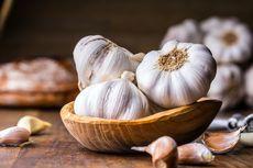 Ramuan Bawang Putih 1.000 Tahun Diklaim Sebagai Antibiotik Paling Manjur, Kok Bisa?