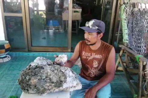 Pemulung Ini Temukan Bongkahan Batu Diduga Muntahan Paus Senilai Rp 9,1 Miliar
