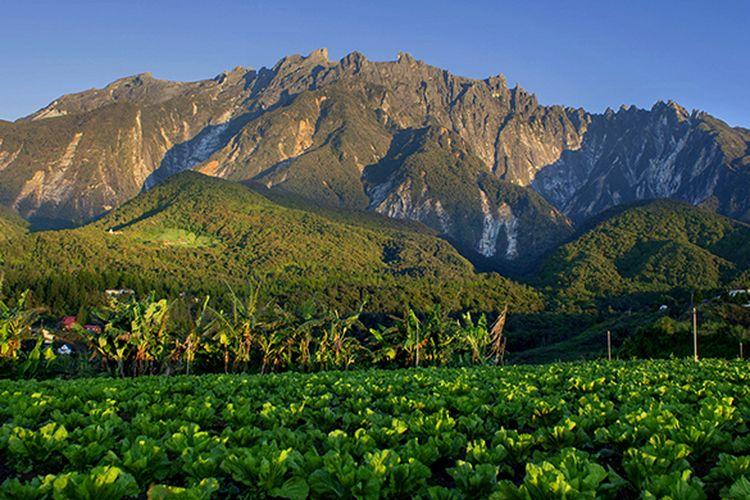 Keindahan alam di kaki Gunung Kinabalu (Dolly MJ/Shutterstock.com)