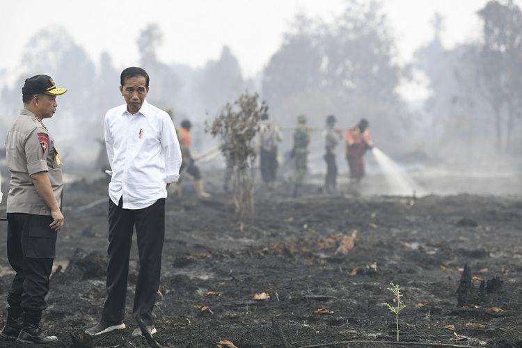 Presiden Joko Widodo (kanan) didampingi Kapolri Jenderal Pol Tito Karnavian meninjau penanganan kebakaran lahan di Desa Merbau, Kecamatan Bunut, Pelalawan, Riau, Selasa (17/9/2019). ANTARA FOTO/Puspa Perwitasari/aww.