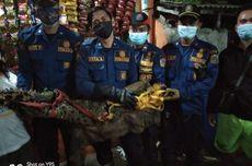 Buaya Sepanjang 1,7 Meter Ditemukan di Selokan di Tambora