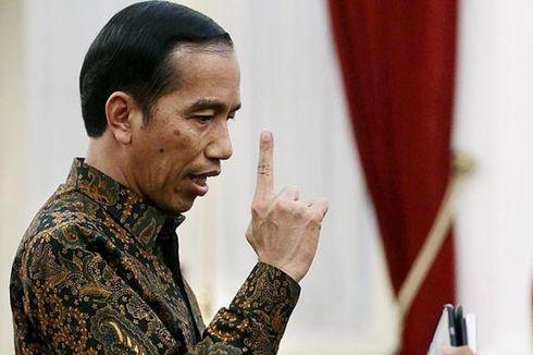 Presiden Jokowi Jawab Kritik Susi soal Ekspor Benih Lobster