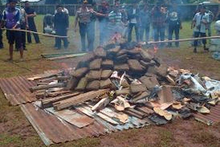 Sebanyak 3,3 ton ganja dibakar di lapangan Polsek Palmerah, Jakarta Barat, Rabu (11/3/2015)