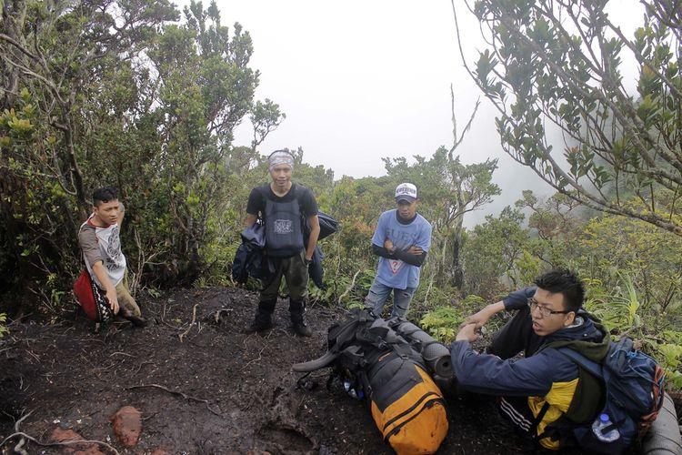 Kondisi jalur tugu Rimau gunung Merapi Dempo di kota Pagaralam, Sumatera Selatan.