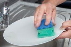 Nih... Sarang Bakteri di Dapur Anda!