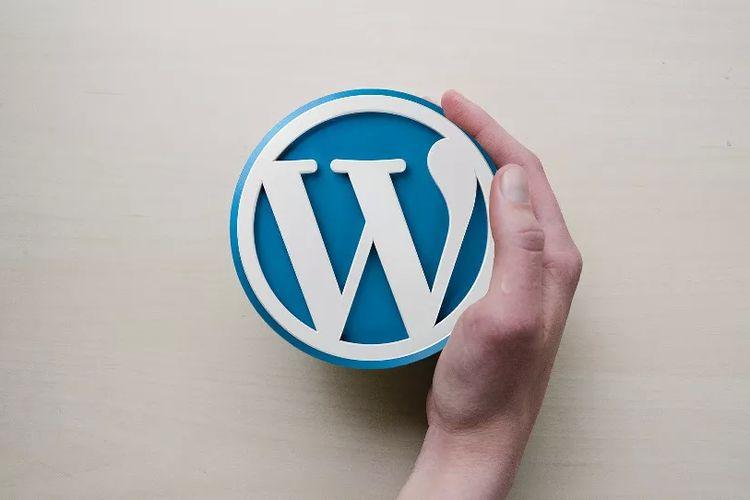 Ilustrasi Wordpress.
