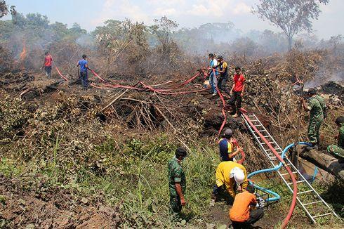 4 Provinsi Siaga Darurat Kebakaran Hutan dan Lahan