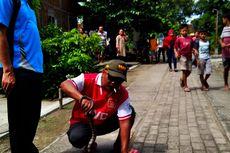Ular Kobra Sepanjang 1,5 Meter Berkeliaran di Pemukiman Warga Ngawi