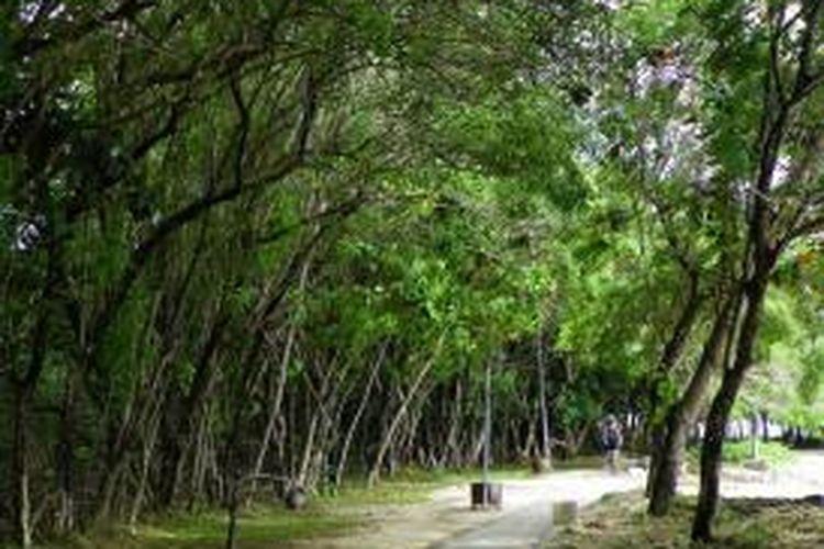 Jalur menuju Beach Club di sepanjang pinggir Pantai Tanjung Lesung, Jum'at (13/2/2015). Tanjung Lesung Conservation Park sementara akan dibangun dekat Beach Club seluas satu hektar.
