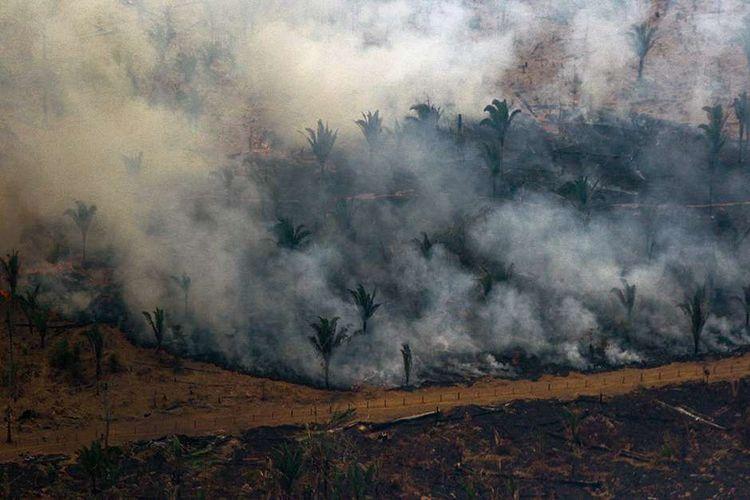 Foto udara menunjukkan asap mengepul dari area hutan yang dilalap api di kawasan Boca do Acre, Amazon, Brasil, Sabtu (24/8/2019). Kebakaran hutan Amazon menjadi sorotan dunia setelah api yang menjalar di paru-paru dunia itu mencapai 18.627 kilometer persegi tahun ini, dengan 76.720 kebakaran terjadi dari Januari-Agustus.