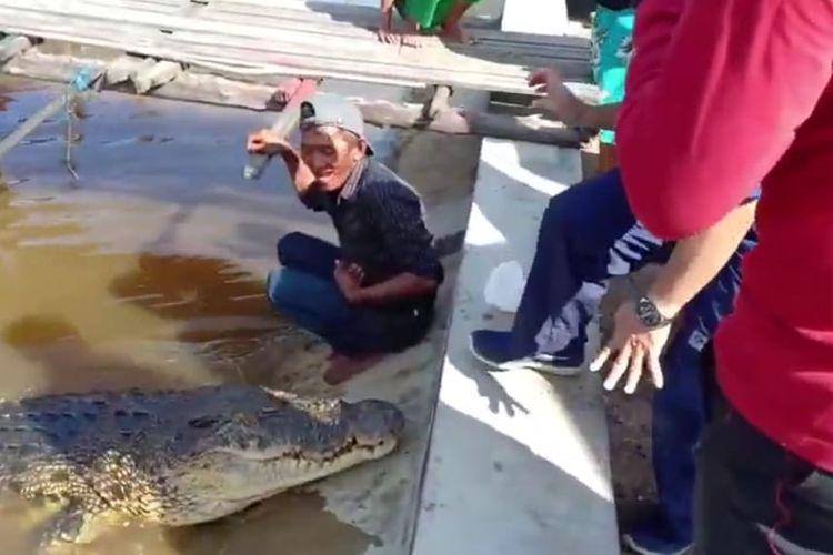 Tangkapan layar video Pak Ambo saat memberi makan buaya di Muara Sungai Guntung, Kota Bontang, Kaltim, Minggu (14/6/2020).
