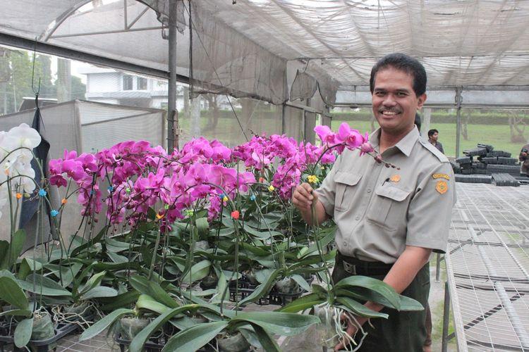 Direktur Jenderal (Dirjen) Hortikultura Suwandi optimistis pada ekspor bunga krisan karena tanaman hias Indonesia memiliki daya saing yang tinggi di pasar dunia.