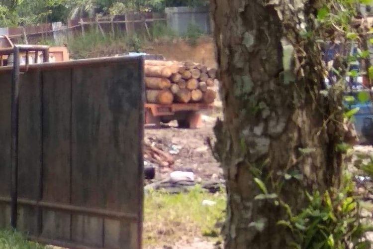 Truk memuat kayu yang sempat diamankan petugas polisi hutan dititip di salah satu panglong di Pematangsiantar, Sabtu (2/2/2019).