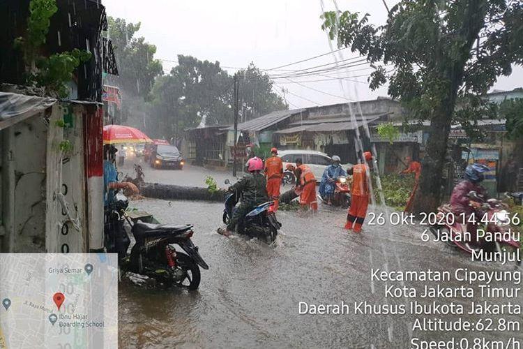 Pohon tumbang tutupi sisi Jalan di Kawasan Munjul, Jakarta Timur, Senin (26/10/2020)