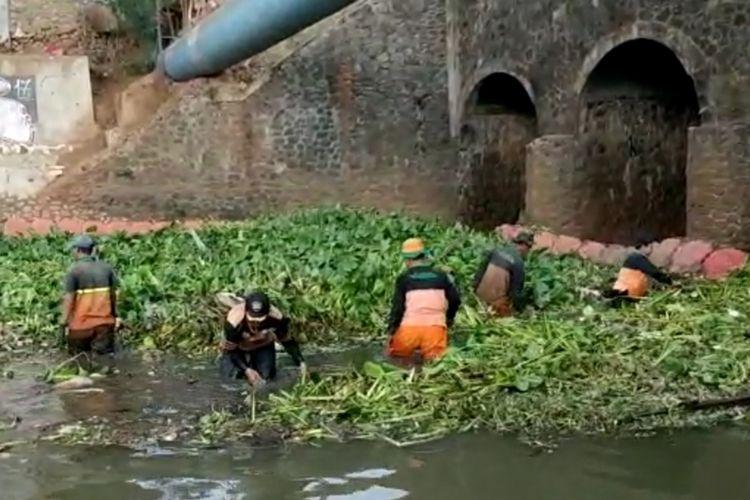 Sampah eceng gondok sumbat gorong-gorong di Kali Sunter, Kelurahan Cipinang Melayu, Kecamatan Makasar, Jakarta Timur, Minggu (3/11/2019).
