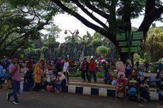 Taman Margasatwa Ragunan Prediksi Jumlah Pengunjung Libur Nataru Bakal Capai 150 Ribu