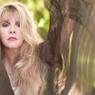 Lirik dan Chord Lagu Stop Draggin' My Heart Around - Stevie Nicks
