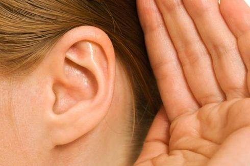 Diet Mediterania Kurangi Risiko Gangguan Pendengaran, Benarkah?