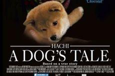 7 Film Mengharukan Persahabatan Anjing dan Manusia, Siap Banjir Air Mata